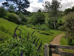 A small part of the 12-acre Hobbiton Movie Set