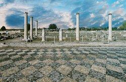 Excursion to Vergina plus Pella