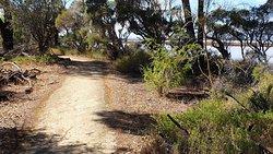 Walk or cycle path
