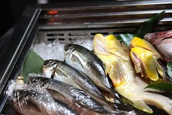 水揚げされたばかりの新鮮な魚はもちろんの事、職人自ら厳選し一つ一つ心を込めて料理しております