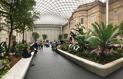 史密森尼美國藝術博物館