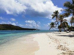 Vue du catamaran aux Tobago Cays