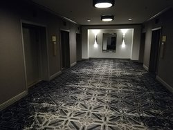 Carpets look bleach stained