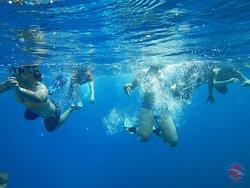 Realizando esnorquel con el equipo de Cuba Blue Diving en La Habana