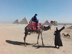 sul cammello alle piramidi