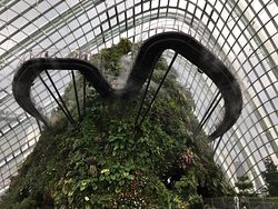 Lovely day at Gardens By The Bay in Singapore