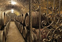 Amazing wine cellar in VILLÁNY wine region, in the southern part of Hungary.