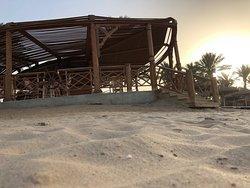 Sentido Palm Royale - Das Ägyptische Paradies ❤️