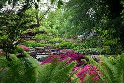 Japanischer Garten im Botanischen Garten Augsburg