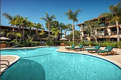 Relax at our beautiful outdoor pool and Jacuzzi.