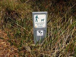dog rules and snake warning