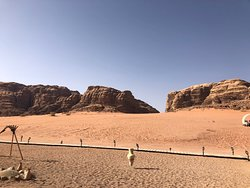 Oasi nel deserto