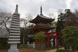 Otaki Fudoson Konzoji Temple