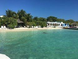 За отличным отдыхом ВАМ в Lagoon View Maldives!