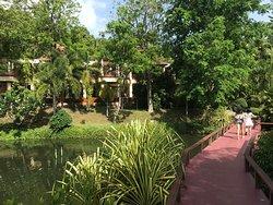 view inside resort