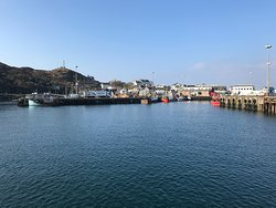 Arriving into Mallaig harbour