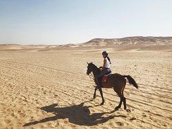 Saqqara desert