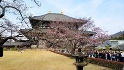 Templo Tōdai-ji