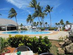 Palmtrees overlooking the pool ...