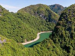 beautiful road to VIet Hai village