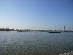 Der Rhein.
