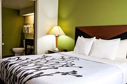 Spacious guest room