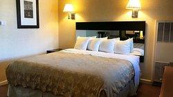 MH PacificHeightsInn SanFrancisco CA Guestroom KingNonSmoke