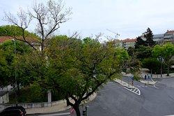 Premium Park View