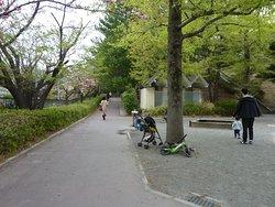 公園の周辺
