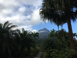 View of Arenal outside our room from the path.