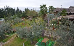 vue sur jardin  Dar Ejdoud