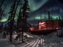 The Aurora dancing above our Nights Under Lights yurt in Churchill, MB.