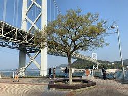 Dannouracho observation deck