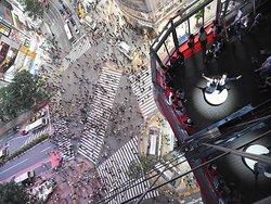 photo of Shibuya's crossing
