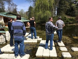 Stepping stones on the pond