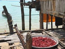 Sortie Surin - Village des pêcheurs