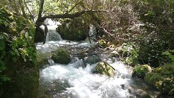 Sendero Rio Majaceite