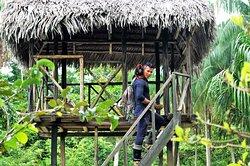 Amazon Fronteras Jungle Tours