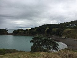 This is the most beautiful coastal walk on Waiheke going from Owhanake Bay to Maitiatia Bay.  Even on a day when rain is not far away this walk takes in lovely views of the Hauraki Bay with Auckland in the distance.  Many little Bays between the coastal walk and steep cliffs.  Beautiful big Pohutukawa trees hugging the cliffs.   Passing by stunning houses nestled into the hill.  Good walking shoes are necessary and if you have a walking stick take that too.  Check if the track is open!