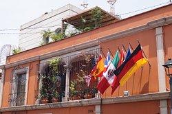 Las mejores tarifas,calidad y buen servicio,solo en Oaxaca. Una opción para usted que es de gustos exigentes.