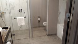 All in one - basin, shower and WC. A shame that the toilet door is not opaque
