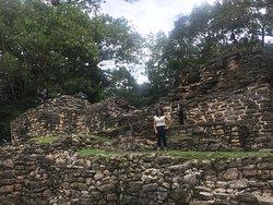 Mi zona arqueológica fav
