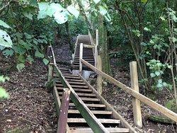 Bledisloe Park Walkway