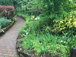 Winthrop Gardens