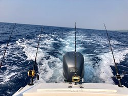 Fishing, Snorkeling, a great boat ride!