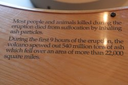 Most people and animals suffocated