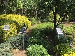 Nemunoki Garden