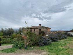 San Polino Winery