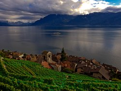 WINEMAX - Swiss Wine Exclusive Tour