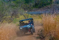 Trails in the dry forest!